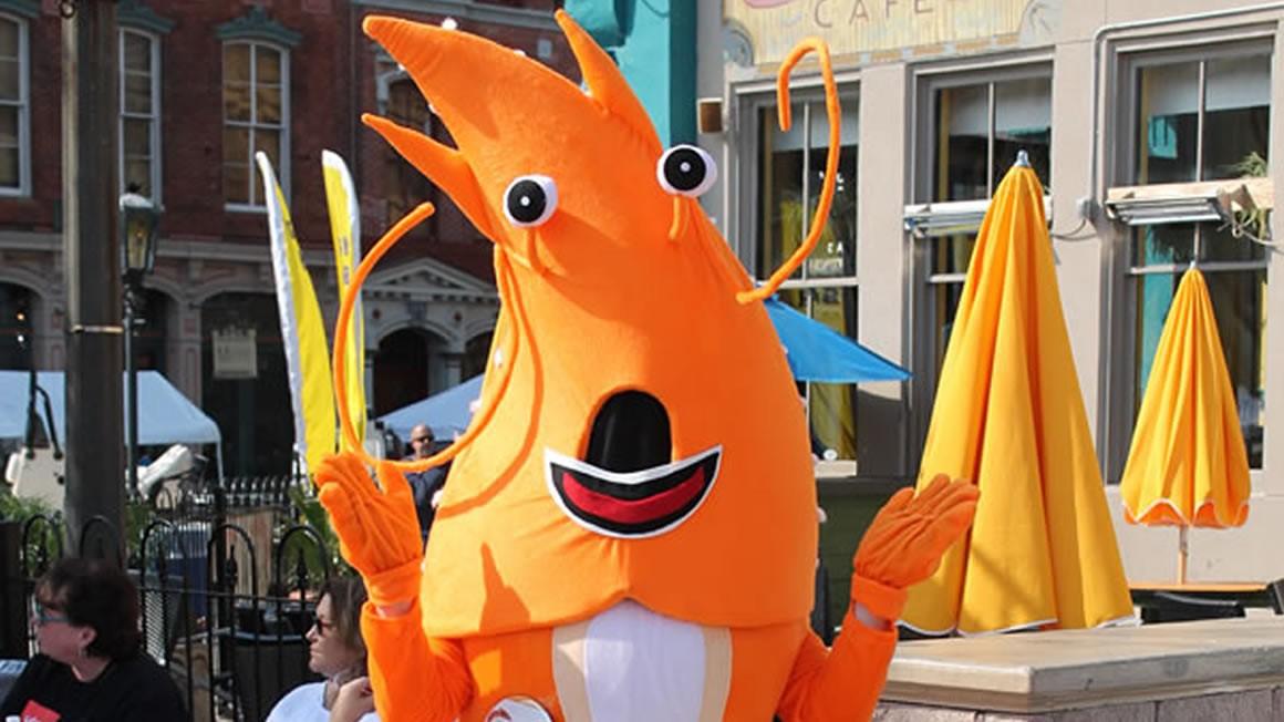 shrimpy-1160px